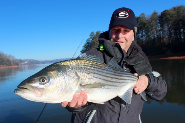 Lanier striper winter